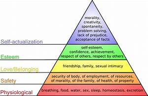 How do relationships affect human behavior? - Quora