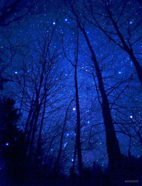 Best Winter Night Sky Images Pinterest