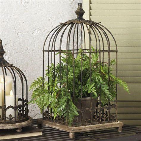 Bird Home Decor by Best 25 Birdcage Decor Ideas On Birdcage