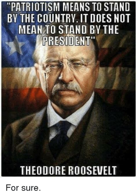 Teddy Roosevelt Memes - patriotism means to stand by the country it does not mean to stand by the president theodore