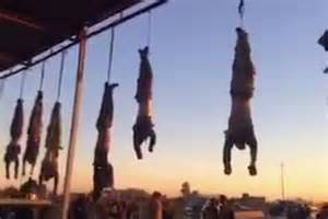 Isis Dead Fighters