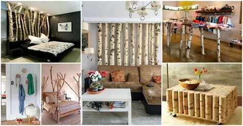 awesome diy ideas  incorporate birch tree   interior