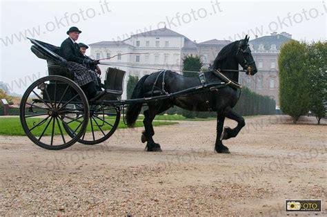 carrozze per cavalli usate carrozze e cavalli da fiaba alla reggia di venaria