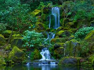 Portland Japanese Garden Located In Washington Park And ...