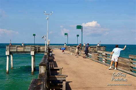 fishing venice pier florida fl guide sharkys boating rentals beaches