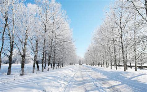 Beautiful Winter Wallpaper by Beautiful Winter Road Wallpaper 1920x1200 8784