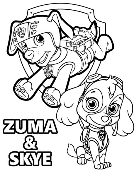 zuma skye coloring page topcoloringpagesnet