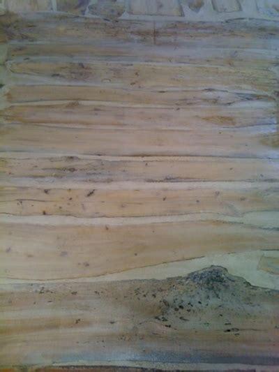 stunning planches bois flott 233 gallery transformatorio us transformatorio us