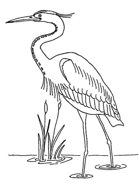 Coloring Outlines by Heron Coloring Pages To And Print For Free