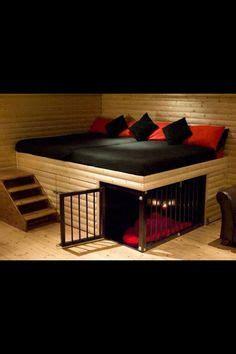 abused dog  trapped  nailed shut dog house