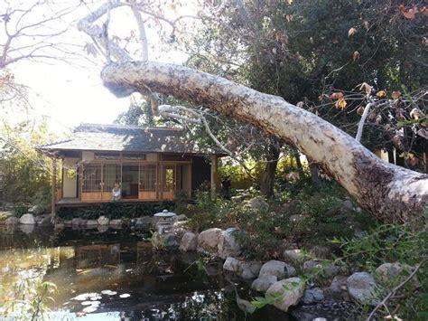 discover the storrier stearns japanese garden pasadena