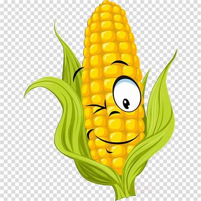 Vegetable Clipart Field Transparent Drawing Flower Corn