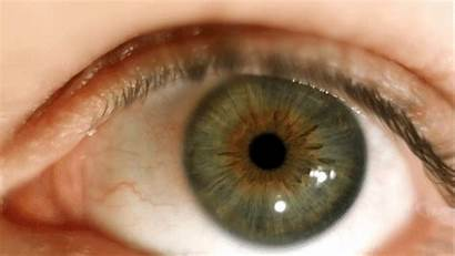 Eyeball Motion Eye Contacts Movement Slow Gifs