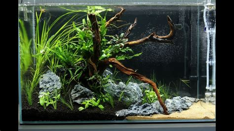 aquascape ada cube garden 60p a of mekong - Aquascape Ada