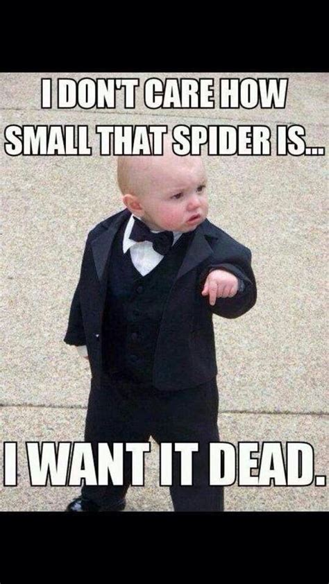 cute funny spider quotes funny funny p herbalife
