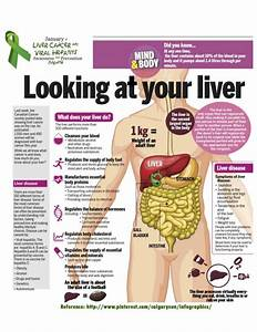 Learn About Your Liver With These Liver Infographics