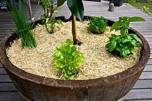 Small herb garden design photograph geplaatst door anja hu for Small herb garden