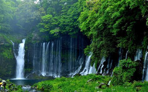wallpaper shiraito falls waterfall nature
