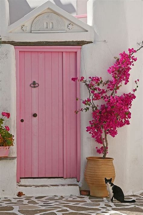 impressive front door plant decor ideas outdoorthemecom