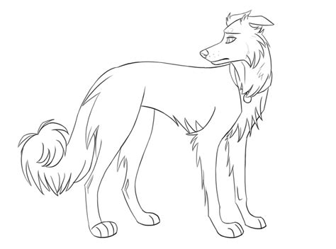 Bordercollie Free Colouring Pages