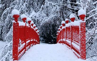 Bridges Trees Snow Winter Allwallpaper 1390