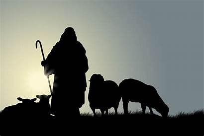 Shepherd Shepherds God Were There John Lord