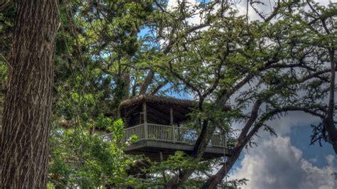 luxury treehouse resort  texas rio frio treetop
