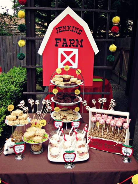 barnyardfarm birthday party ideas photo    catch