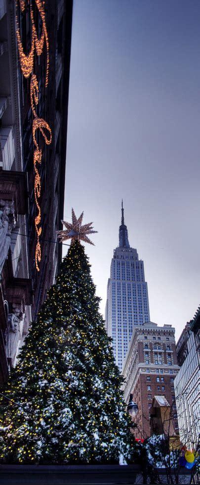 christmas tree decoration ideas   york