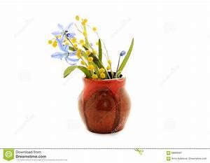 Schneeglöckchen Im Topf : erste fr hlingsblumen blaue schneegl ckchen und mimose im topf stockfoto bild 68899587 ~ Markanthonyermac.com Haus und Dekorationen