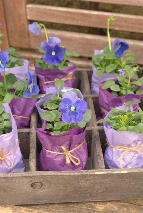 potted paper flower ideas small potted plant favors mothers day gifts shower favors gift wrap bridal shower