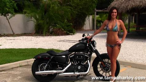 2013 Harley-davidson Iron 883 Sportster Motorcycles For
