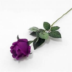 Single Lavender Roses | www.imgkid.com - The Image Kid Has It!