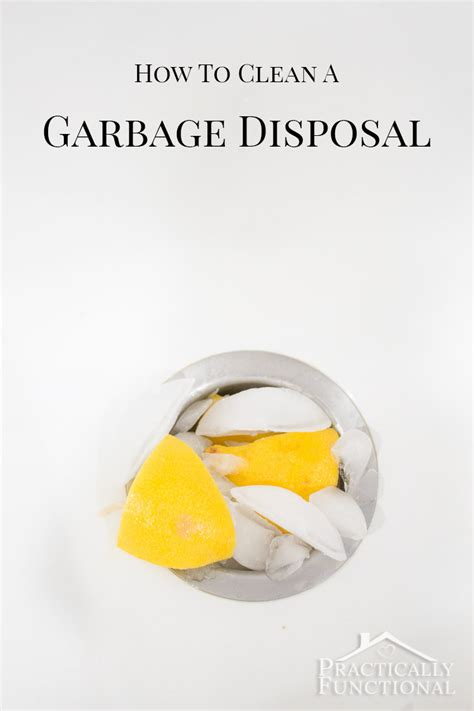 how to clean sink disposal how to clean deodorize a garbage disposal