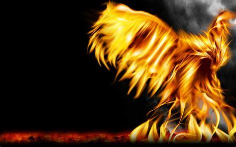 Animals Birds Reborn In Fire