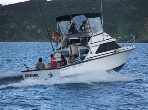 Bay Fisher Boats Nz by Strayline Fishing Charters Paihia New Zealand Top Tips