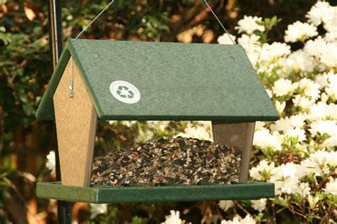 15 top best bird feeders that you can buy right now