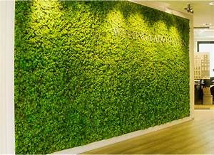 The, Latest, Trend, In, Green, Houses, Moss, Walls
