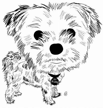 Coloring Pages Dog Puppies Puppy