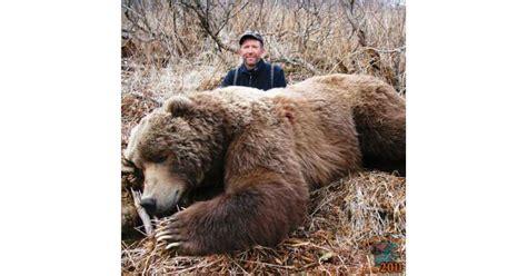 Kodiak Bear Size