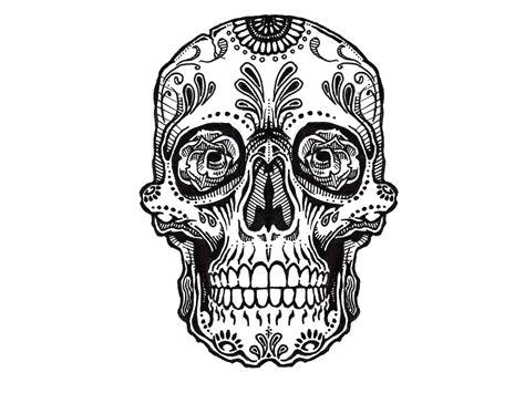 skull designs   clip art  clip art  clipart library