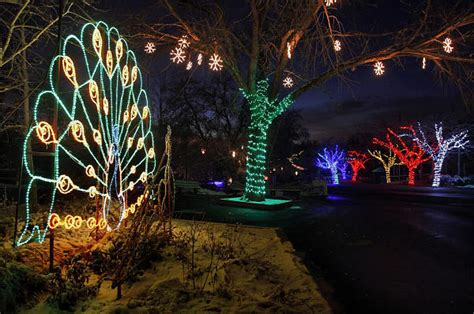 hogle zoo lights giveaway winner