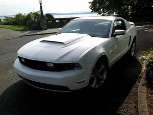 2010 Ford Mustang GT Premium For Sale - CarGurus