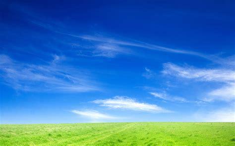 blue sky  green grass     desktop