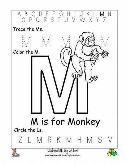Letter Worksheets Alphabet Printable Letters Preschool Worksheet