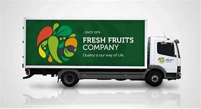 Fresh Fruit Company Fruits Globalization Ffc