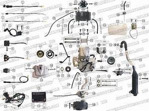 Wiring Diagram Tgb Hornet 90cc Atv
