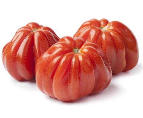 pomodori cuore di bue in vaso pomodori cuore di bue