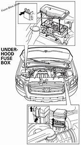 Fuse Box Diagram Honda Pilot  2003