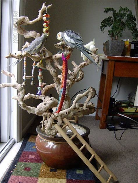 avian avenue lucky tiels i love this idea just getting